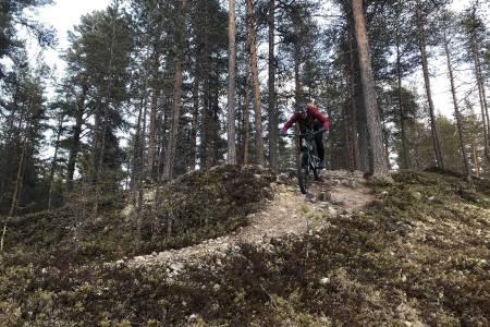 SESONGSTART PÅ RØROS: Flere av stiene i Mølmannsdalen på Røros er frie for snø. Foto: Privat