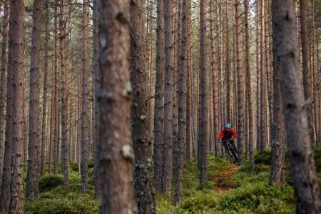 Ny fritidssysel: Knut Myking flyttet til Sogndal for skikjøringa. Nå har pudderplankene fått selskap av en stisykkel i boden.
