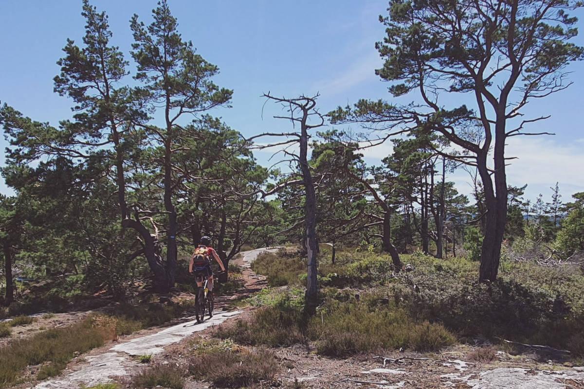 Svinesund til Oslo stisykling tips