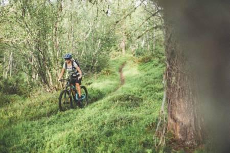 stisykling oppdal tur sykkeltur tips guide