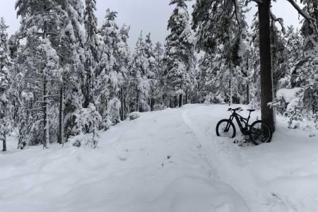 stisykling vinter østmarka Trulsrunden