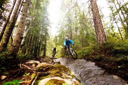stisykling trondheim tips tur guide sykkeltur terrengsykling