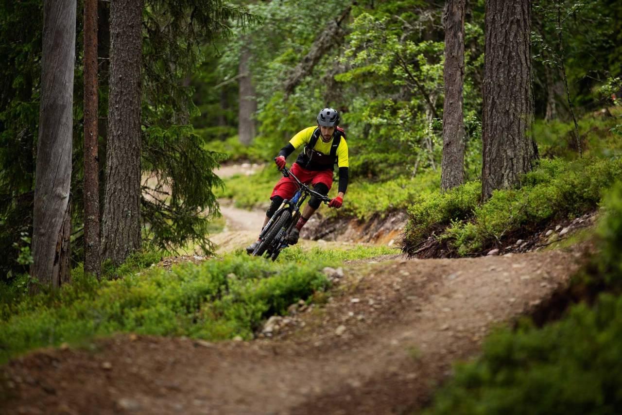 TILRETTELAGT : I Dalarna er det brukt både gravemaskin og skilt for å tilrettelegge stiene for sykling.Thomas Brynjulf Svendsen nyter duvende svinger i skogen.