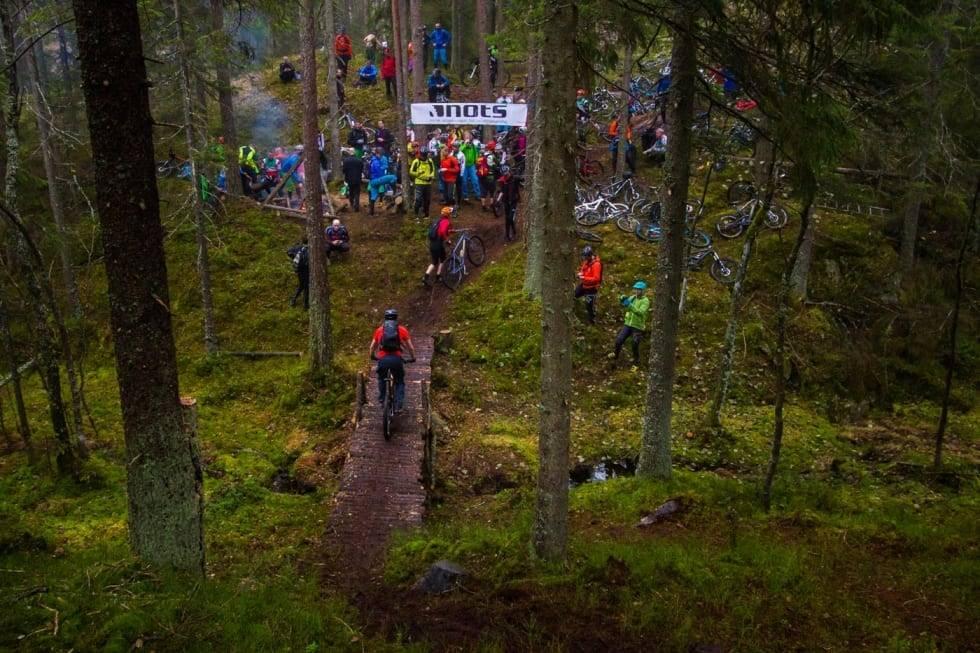 DETTE ER PIONÉREN: I denne saken finner du det du trenger å vite for å sykle Pionéren i Østmarka utenfor Oslo. Foto: Snorre Veggan