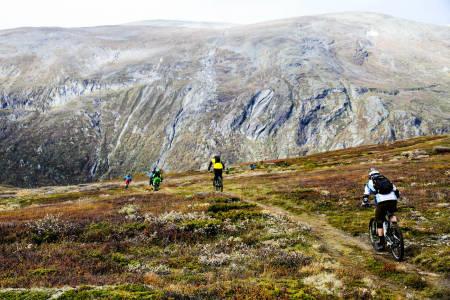 Høydemeter ble det rikelig av på årets utgave av Oppdal Stisykkelcamp, som ble arrangert i helga. Foto: Bjarne Grøseth
