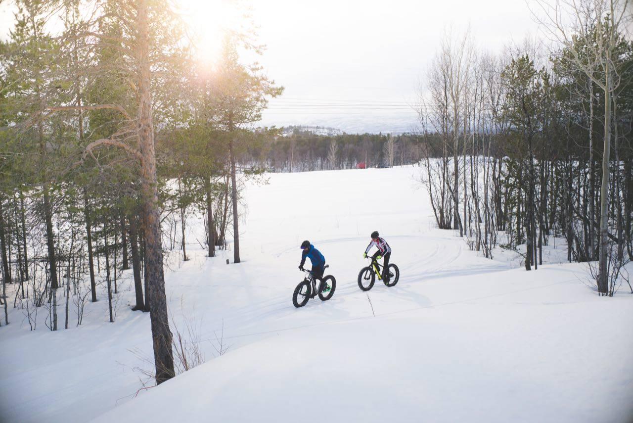 tips vintersykling
