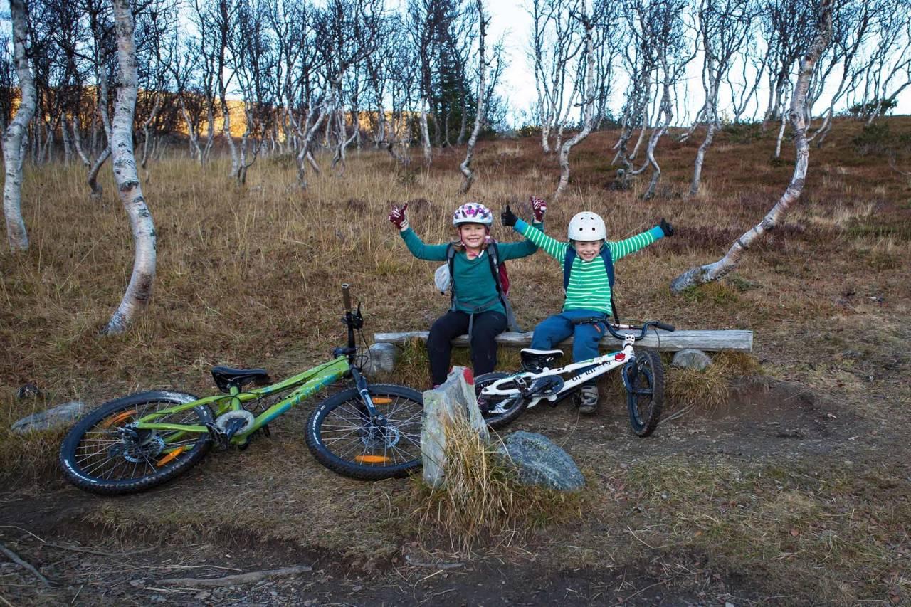 oppgradering barnesykkel terrengsykkel barn