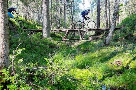 NOTS jobber aktivt for terrengsyklistene, både politisk og i skogen. Her fra Pioneren, prestisjeprosjektet til NOTS Oslo og Omegn i Østmarka. Foto: NOTS Oslo og Omegn