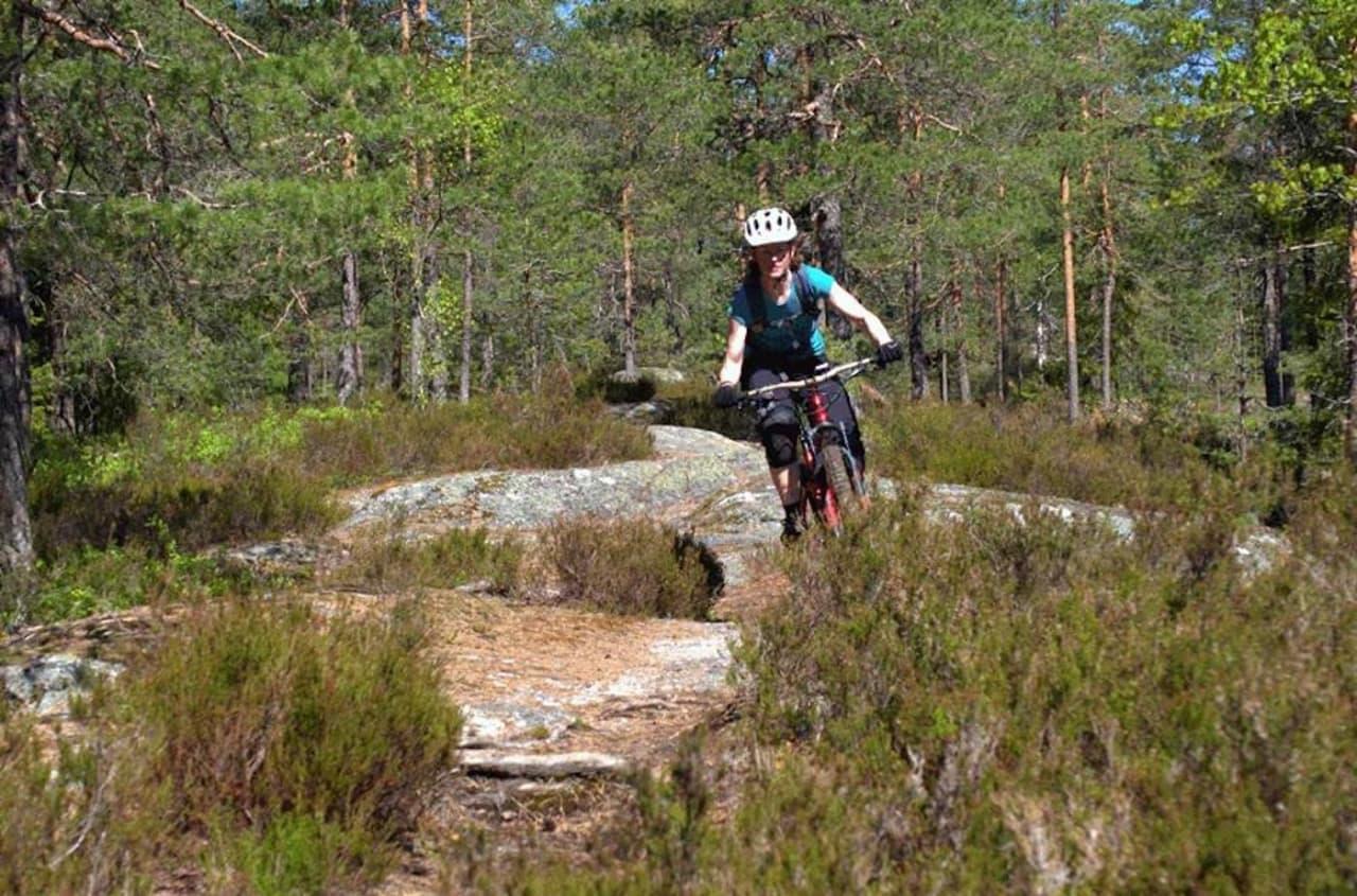 NOTS jobber for norske terrengsyklisters interesser, og har blant annet avverget at blåmerkede stier stenges for syklister. Foto: NOTS