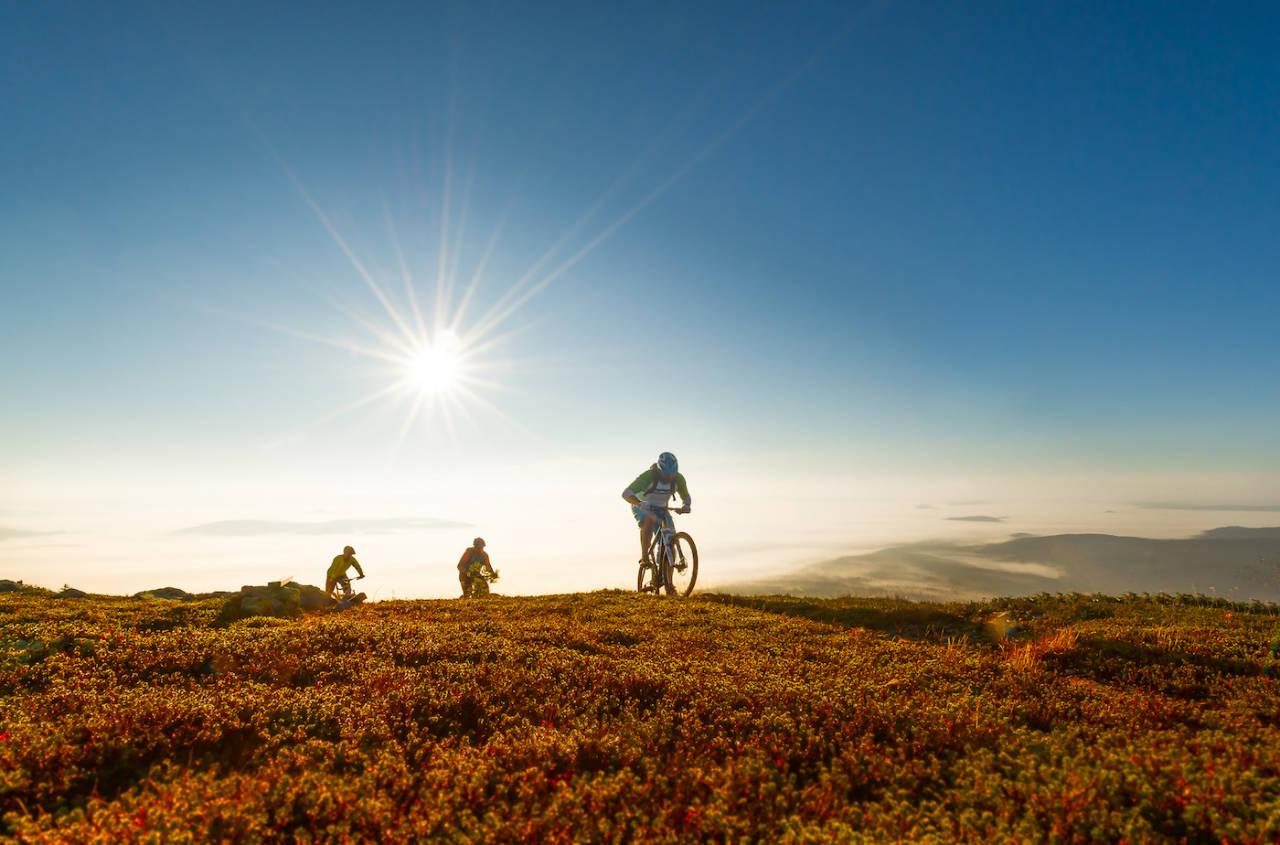 Trysil er en av flere norske destinasjoner som går systematisk inn for å utvikle terrengsykling som reiselivsprodukt. Foto: Ola Matsson/ Destinasjon Trysil