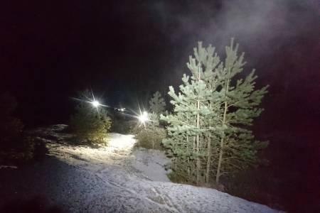 Julestemning på lyktetur i Østmarka med ti minus og bombesikker barfrost i bakken. Foto: Ole Hem