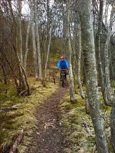 Endelig bart:  Nidelvstien er ukas stalltips for Trondheimssyklister med barmarks-abstinenser. Bjarte Mongstad hadde det brillefint i går. Mobilfoto: Henrik Grytbakk