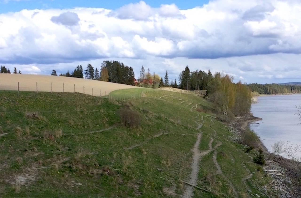 Det omstridte området ved Glomma: Innmark eller utmark? Foto: NOTS