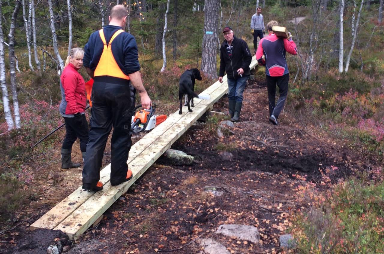 NOTS skal bygge mange broer og klopper i 2016, og bare i høst er det stiftet flere lokallag over hele landet. Foto: Simen Filseth/NOTS Drammen og Omegn