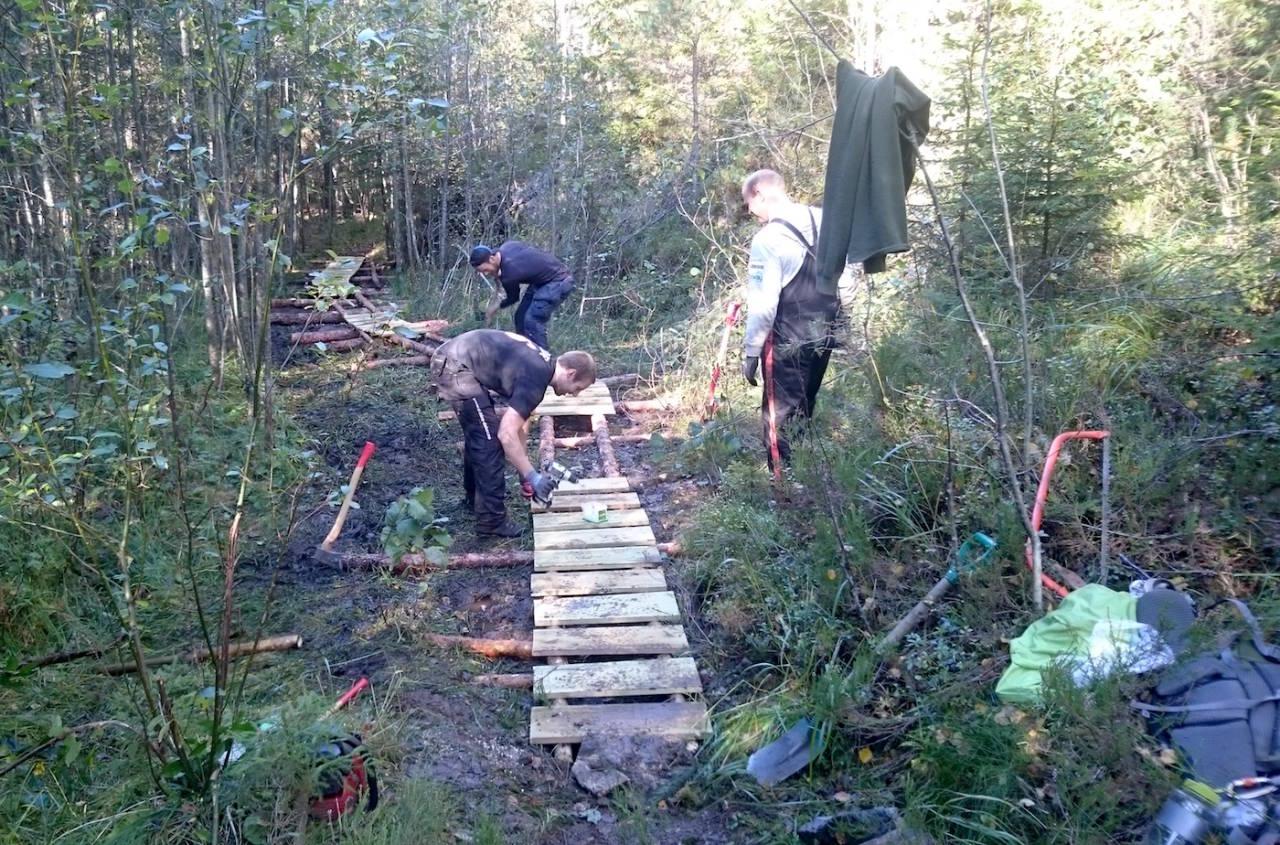 I 2016 skal etter planen deler av den nye terrengparken til Bingsfoss SK åpnes, men arbeidet med prosjektet har pågått lenge. Foto: Privat