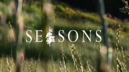 Årets store film-høydepunkt, Seasons kommer snart til landet.