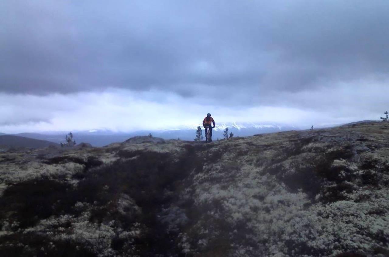 Miljødepartementet skal forske på slitasje fra syklister i verneområder. Foto: Cognacrittet