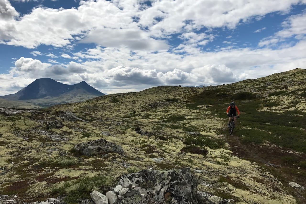 I dette terrenget i Nord-Østerdalen byr Audun Lutnæs i Urørt ski og sykkeleventyr på guidede stiturer. Foto: Audun Lutnæs