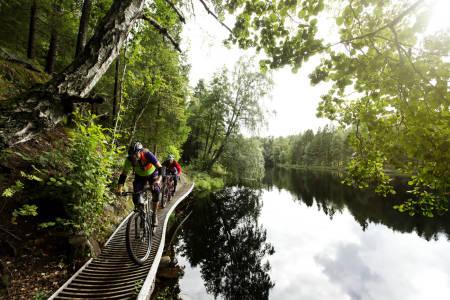 Tilrettelagt sti: Stier bygget av syklister, de er noe for seg selv. Foto: Kristoffer H. Kippernes