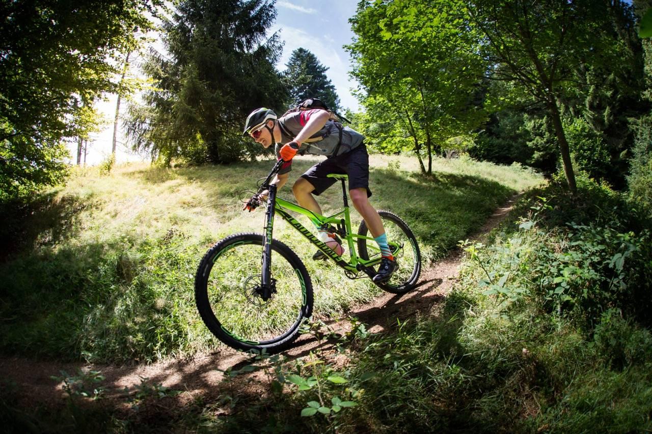 NY VANE? Cannondales Habit er en stisykkel for den stisyklingen vi gjør i hverdagen i skogen. Opp, ned, bort og gjennom. Vi testet den på flotte stier utenfor Freiburg i syd-Tyskland.